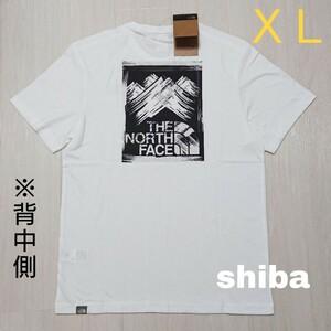 THE NORTH FACE ノースフェイス tシャツ 半袖 白 StrokeMountain ストロークマウンテン 海外XL