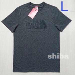THE NORTH FACE ノースフェイス tシャツ 半袖 トップス 灰色 グレー 海外限定 イージー Easy 海外Lサイズ