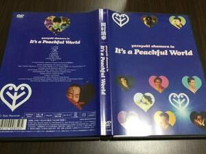 ◆岡村靖幸 yasuyuki okamura in It's a Peachful World DVD 国内正規品 セル版 ビデオクリップ集 だいすき 聖書 バイブル 即決