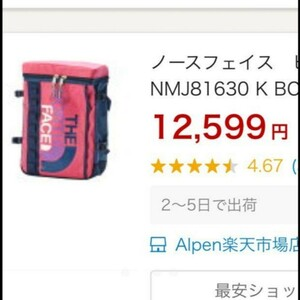 THE NORTH FACE バックパック21L