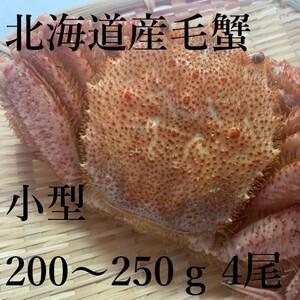 【大特価!】北海道産 毛蟹 4尾(約200~250gサイズ) 冷凍 小型 ボイル けがに ケガニ 毛がに 毛ガニ