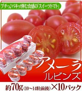 アメーラルビンズ 高糖度 フルーツトマト 自信あります!! 1ケース10パック入り 超激安価格!!、