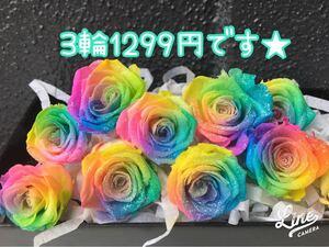 本日SALE★レインボーローズラメ付き★1200円 ばら
