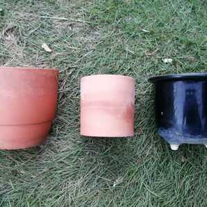 陶器 テラコッタ 盆栽 植木鉢 オシャレな丸鉢 3点セット