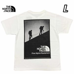 THE NORTH FACE ノースフェイス アルパイン バックプリント Tシャツ