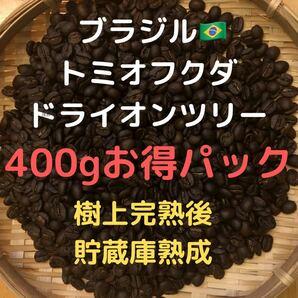 自家焙煎 ブラジル トミオフクダ ドライオンツリー400g(豆又は粉)匿名配送
