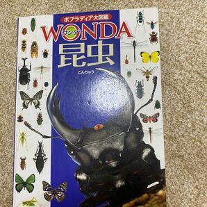 WONDA昆虫図鑑