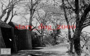 複製復刻 絵葉書/古写真 東京 向島 隅田川堤の桜花 出店 花見 明治期 WA_092