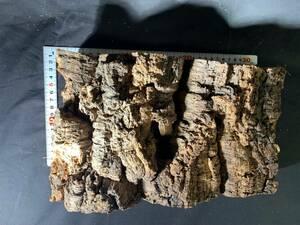 【送料無料】05 コルク樹皮 ポルトガル産