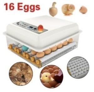 自動孵卵器 インキュベーター 鳥類専用ふ卵器 自動転卵式 孵化器 ヒヨコ生まれ 大容量 自動温度制御 子供教育用
