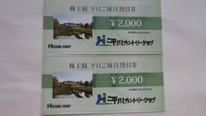 日神不動産 株主優待券 平川カントリークラブ 平日2000円割引券2枚セット