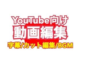☆YouTube向け 動画編集の悩みを解決します!チャンネル登録、視聴維持率アップにつながる編集をします!