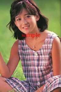 岡田有希子 L版 写真 1枚116