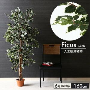 フェイクグリーン 観葉植物 人工 フィカス 高さ 160cm 6号鉢対応 造花 インテリア 目隠し M5-MGKFGB90092