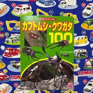 カブトムシ、クワガタ 100