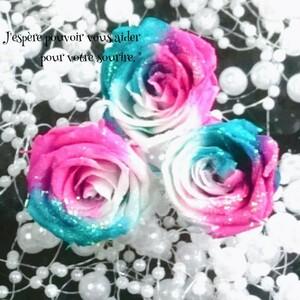 加工花材* ローズ プリザーブドフラワー 花材