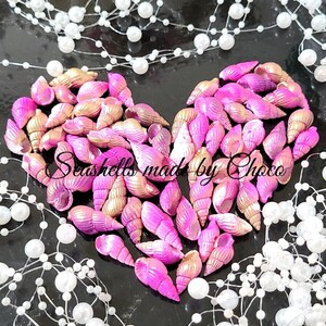 加工貝殻* ピンクグラデ 巻き貝 ハーバリウム花材 レジン