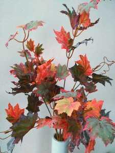 秋 紅葉 3本セット 観葉植物 インテリアグリーンB14