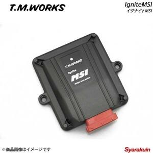 T.M.WORKS/ ...  WORK  база данных  Ignite MSI  Модель автомобиля  другой  Специальный жгут проводов  набор   вспышка  Wagon / вспышка  Wagon  custom  стиль  MM32S