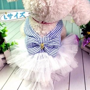 Lサイズ 春夏服 犬服 猫服 小型犬 ペット服 レース フリル ワンピース 可愛い ブルー×ホワイト