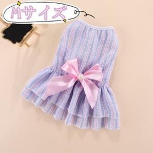 春夏服 犬服 猫服 小型犬 ペット服 リボン フリル ワンピース 可愛い Mサイズ ピンク×ブルー