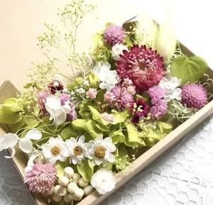 コロコロ千日紅と花かんざし*花材詰め合わせ