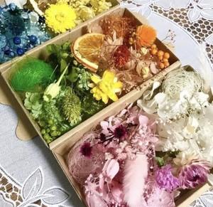 お花の宝石箱6色3BOX*花材詰め合わせ