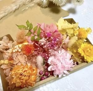 明るい3色ヘリクリサムと千日紅*花材詰め合わせ