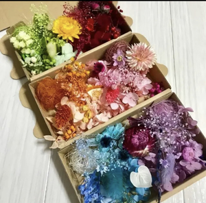 宝石箱6色ヘリクリサム*花材詰め合わせ