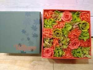 price cut! beautiful goods * Nicola i Burgman breather bdo flower orange × green Mini size