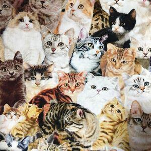 リアルプリント 猫ちゃん 総柄 ネコ 生地 はぎれ ハンドメイド 素材 輸入生地