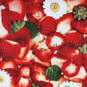リアルプリント フルーツ柄 いちご ナイロン生地 はぎれ 素材 撥水加工 エコバック ハンドメイド 苺