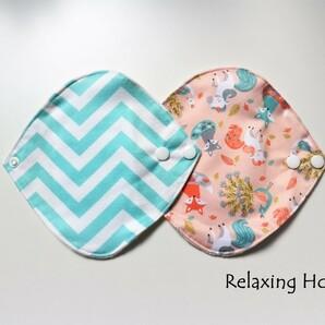 ●布ナプキン (18cm) 2枚 軽い日~普通の日(昼用) 防水 一体型