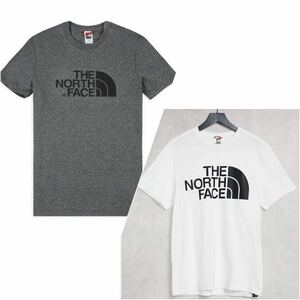 THE NORTH FACE ノースフェイス 定番ロゴTシャツ Sサイズ