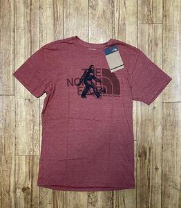 赤(S) THE NORTH FACE ノースフェイスTシャツ 半袖Tシャツ ハーフドーム