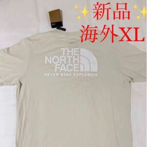 ★新品★ the north face ビッグロゴ 半袖 Tシャツ 人気 XL ザノースフェイス ハーフドーム バックロゴ 海外