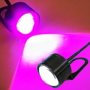 広角照射 LED/ヘッドライト/ポジション 補助ランプ ステー付 紫 CB750F CB400SF NC31 NC39 NC42 Revo CB1000SF CB1100RS CB1300SF 汎用