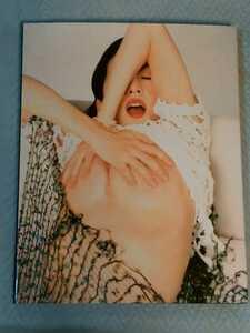 山咲千里 写真集 WHITE MOON スコラ 管理番号101411