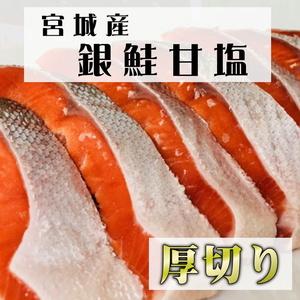 銀鮭 甘塩 厚切り 約100g×5切れ【 三陸産原料使用 】 宮城県産 甘塩銀鮭(養殖) 脂がのっています【冷凍便】③