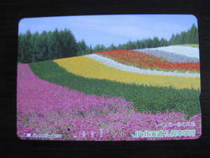 使用済 レインボー色の花畑 JR北海道 札幌車掌所 オレンジカード 1つ穴