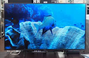 札幌発 美品 Sony/ソニー 4K液晶テレビ ブラビア KJ-49X8500H 2021年製 倍速駆動パネル搭載・Android TV搭載・「HDR X1」搭載 0002068