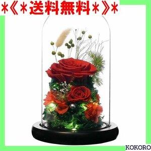 《*送料無料*》 RicoRichプリザーブドフラワー枯れない花観葉植物 レッ 彼女ドライフラワーガラスポットり レゼント 108