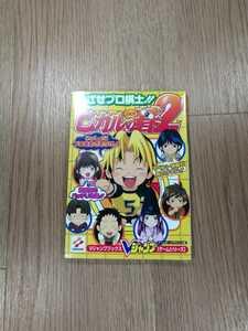 【B1857】送料無料 書籍 ヒカルの碁2 めざせプロ棋士!! ( GBA ゲームボーイアドバンス 攻略本 B6 空と鈴 )