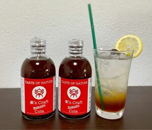 KARATO Cola 2本セット 自家製 クラフト コーラ シロップ 手作り カクテル お酒 ソフトドリンク コークハイ