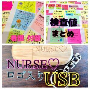 看護 付箋 ノート ★ 看護 資料 USB ★ 検査値 まとめ セット ^_^