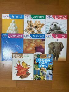 キンダーブック3 たまご みつばち らっこ シャボン玉 たまねぎ ぞう おちば いきもの秘密図鑑 計8冊 フレーベル館
