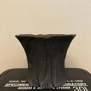 TAIJU 大鉢 roots trigger アーネストハーツ raw life factory invisible ink たけろうポット パキポディウム コーデックス 陶器鉢