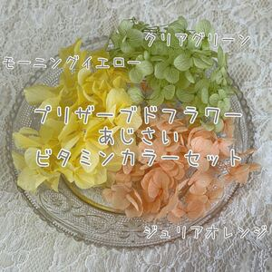 プリザーブドフラワー紫陽花 ビタミンカラーセット ハーバリウム花材