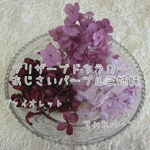 プリザーブドフラワー 紫陽花 パープルセット ハーバリウム花材 キャンドル ネイル レジン アクセサリー