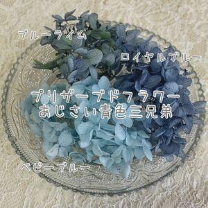 プリザーブドフラワー紫陽花 ブルー系セット ハーバリウム レジン 押し花